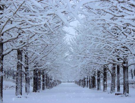 【iPhone iPad 寒くなる季節もバッテリー消耗が高まる!】
